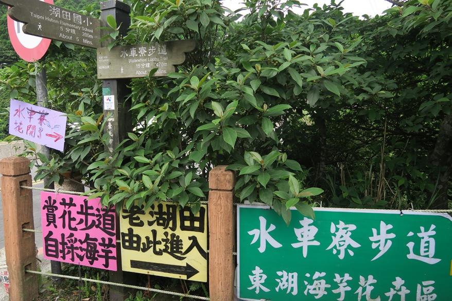 taibei_flower_02