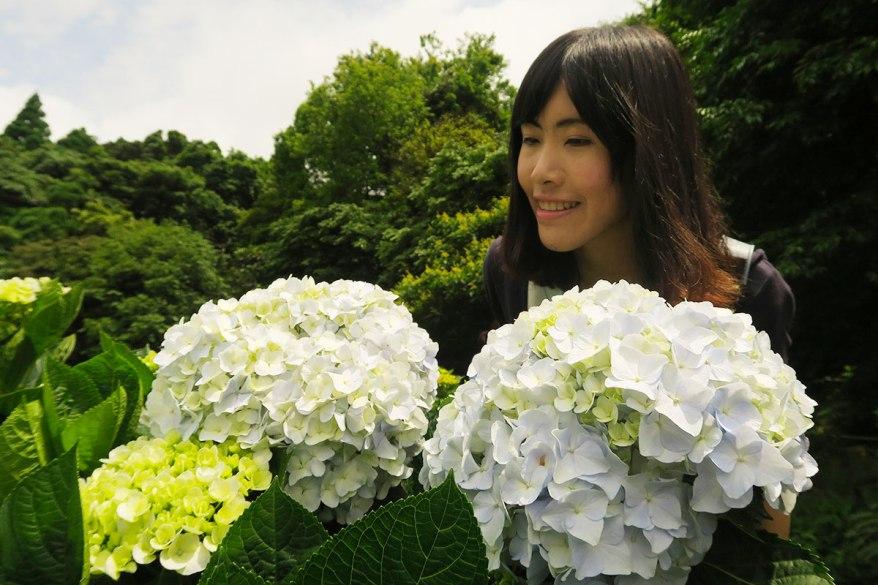 taibei_flower_69